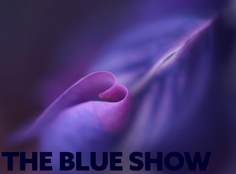 blue-show-base
