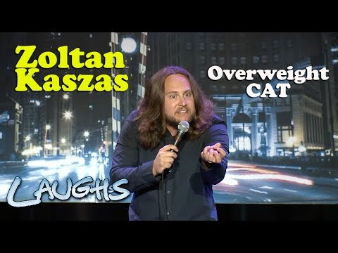 Overweight Cat | Zoltan Kaszas | Stand-Up Comedy